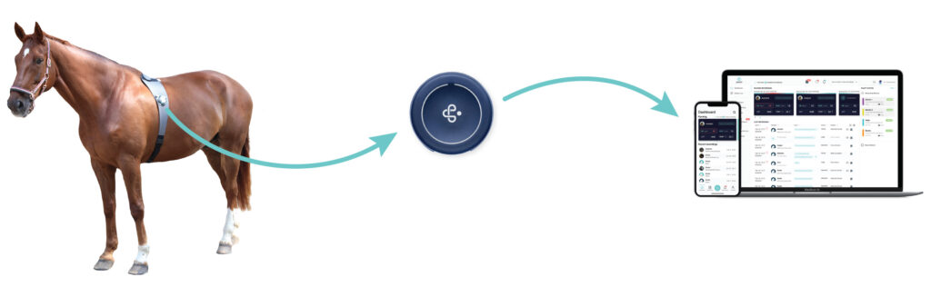 How the Piavet System works